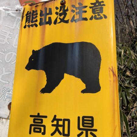 子熊が欲しいのです!